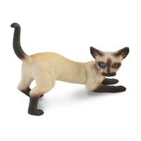 SIAMESE CAT STRETCHING (S)