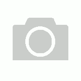 THOROUGHBRED POSEABLE HORSE (M)